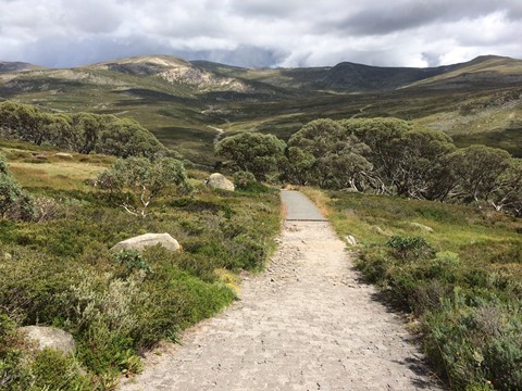 Track to Snowy River